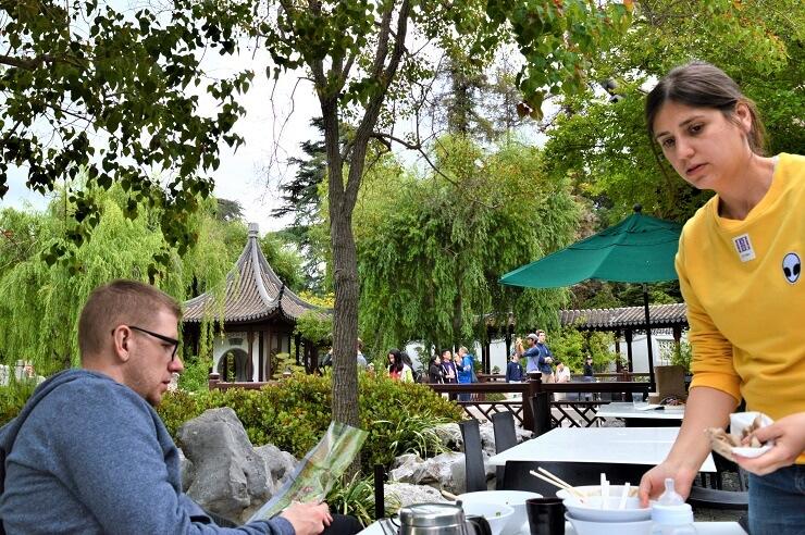 Обед в Китайском саду