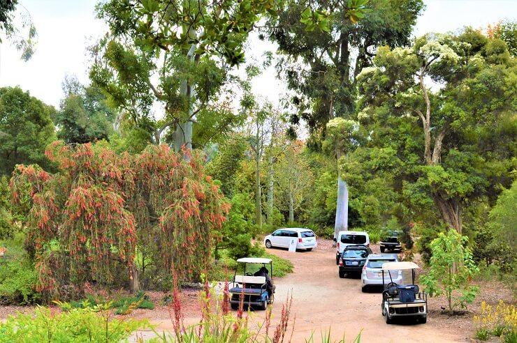 Вход в Австралийский сад в ботаническом саду Хантингтона