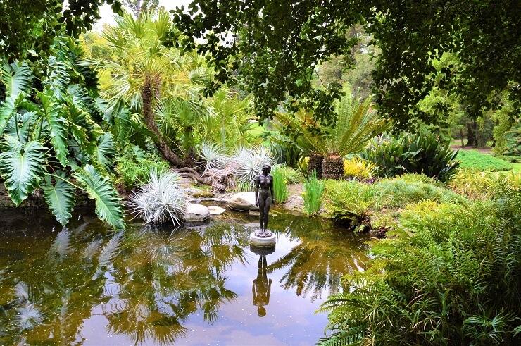 Джунгли в ботаническом саду Хантингтона