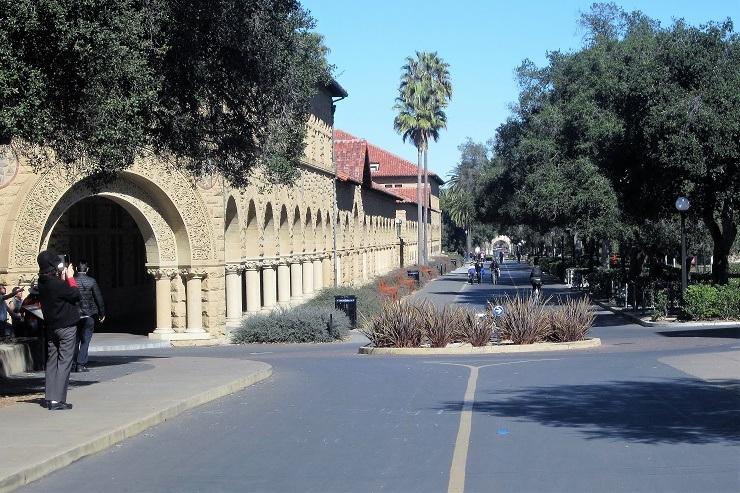 Стэнфорд. Галерея