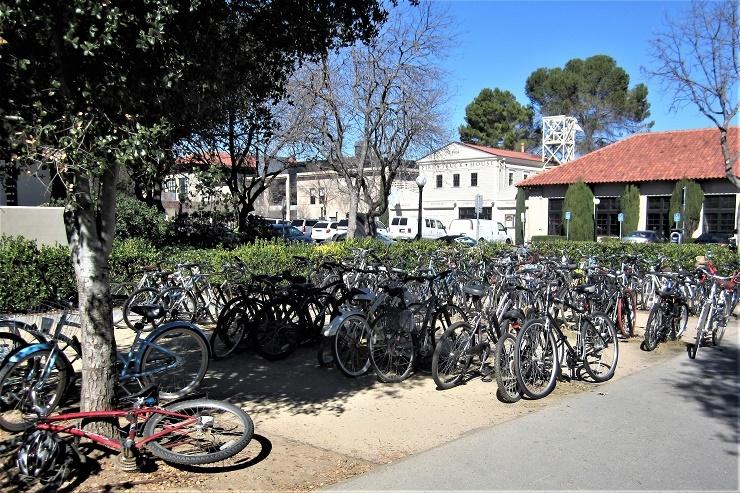 Стэнфорд. Студенческие велосипеды