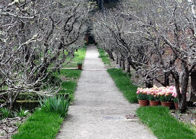 Сад усадьбы Филоли