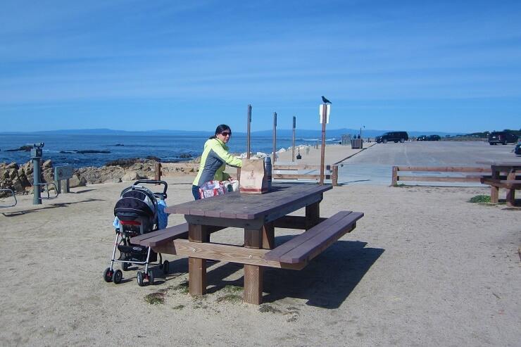 Место для пикника на 17-мильной дороге