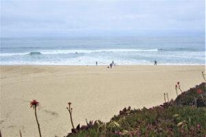 Пляж Халф Мун Бэй и самые большие в мире тыквы
